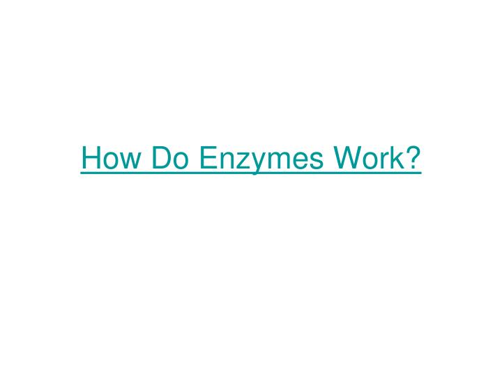 How Do Enzymes Work?