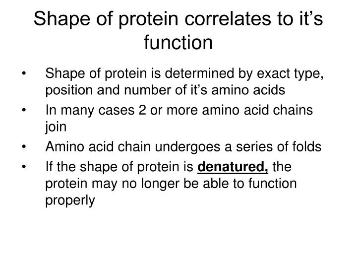 Shape of protein correlates to it's function