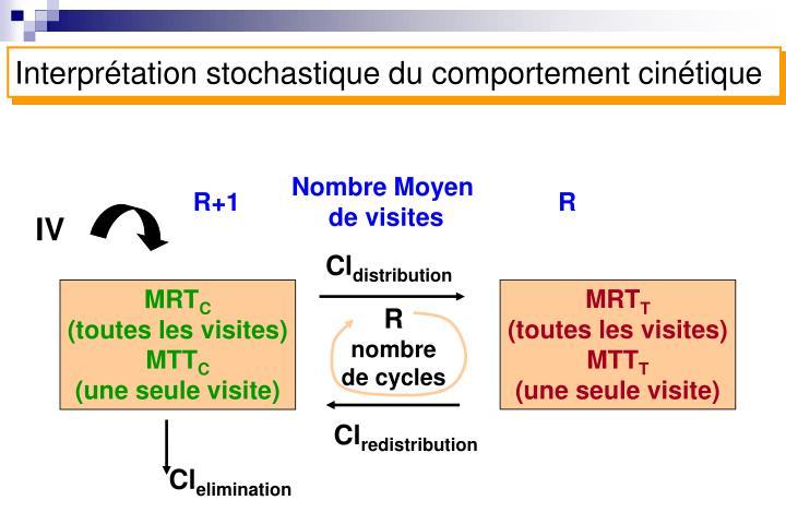 Interprétation stochastique du comportement cinétique