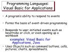 programming languages visual basic for applications