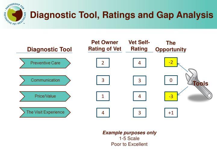 Diagnostic Tool, Ratings and Gap Analysis