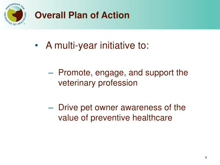 Overall Plan of Action