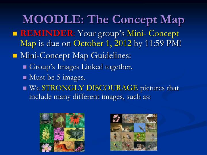 Moodle the concept map