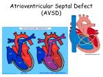 atrioventricular septal defect avsd