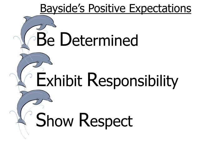 Bayside's Positive Expectations