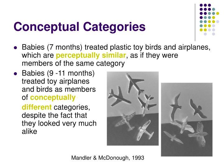 Conceptual Categories