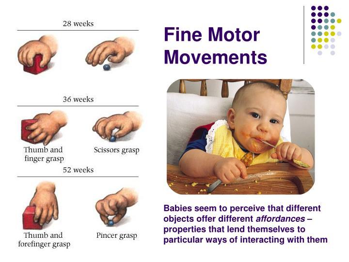 Fine Motor Movements