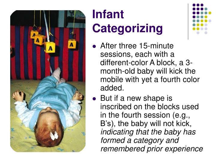 Infant Categorizing