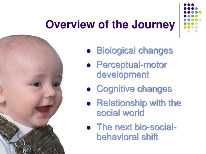 Overview of the journey
