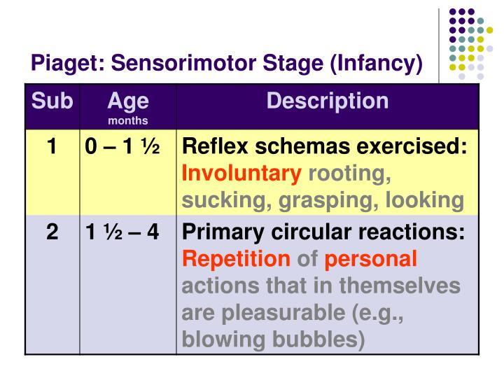 Piaget: Sensorimotor Stage (Infancy)