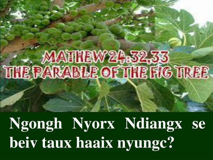 Ngongh Nyorx Ndiangx se beiv taux haaix nyungc?