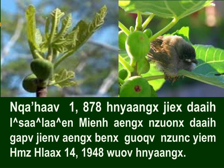 Nqa'haav  1, 878 hnyaangx jiex daaih