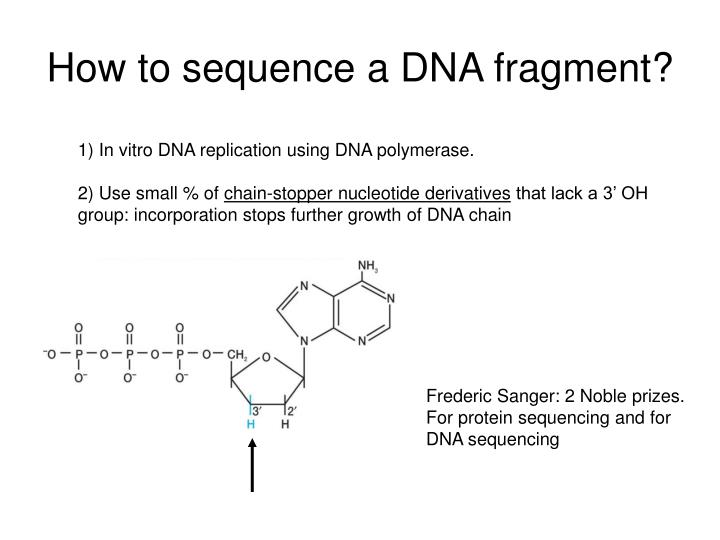 How to sequence a dna fragment