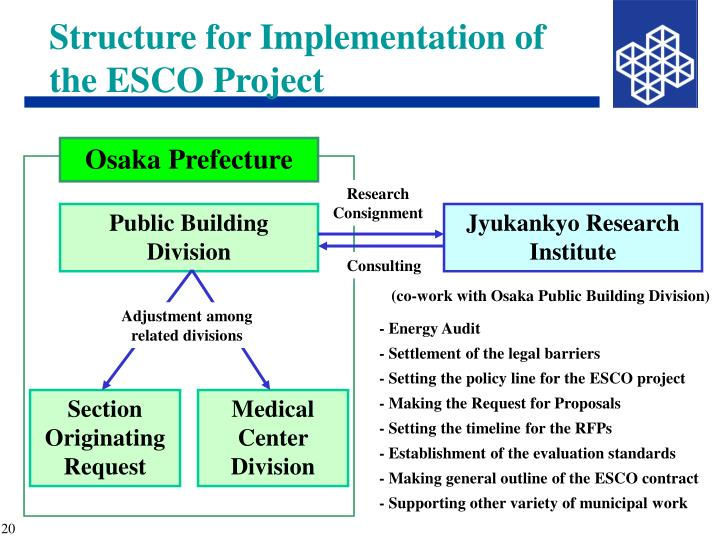 Structure for Implementation of the ESCO Project