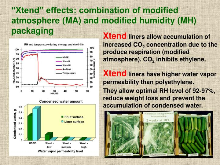 """""""Xtend"""" effects: combination of modified atmosphere (MA) and modified humidity (MH) packaging"""