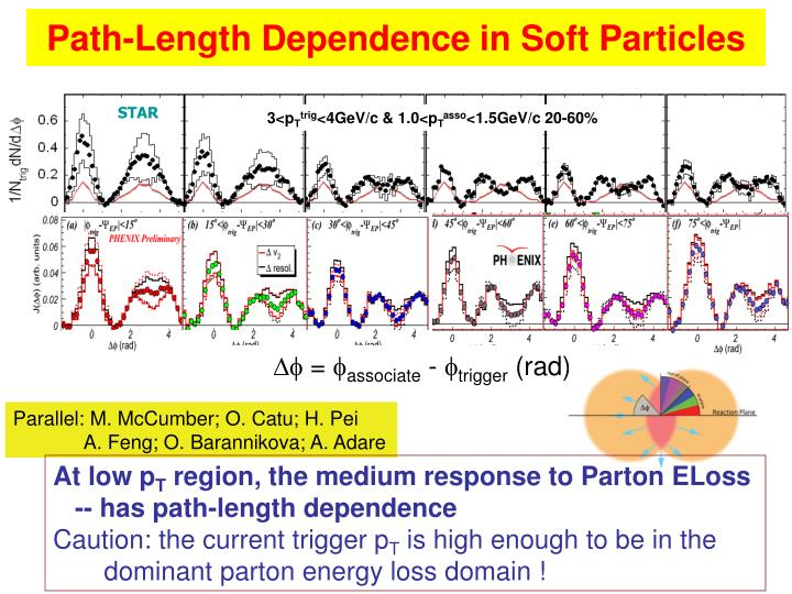 Path-Length Dependence in Soft Particles
