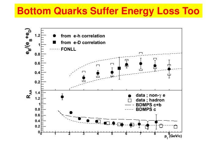Bottom Quarks Suffer Energy Loss Too