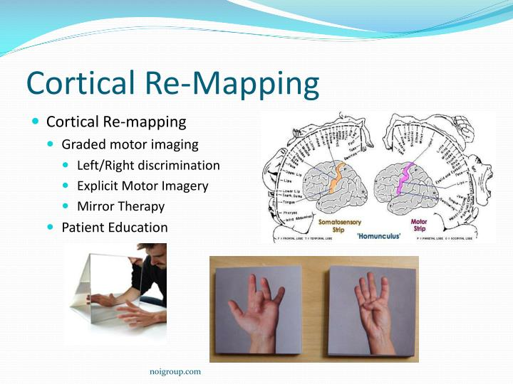 Cortical Re-Mapping