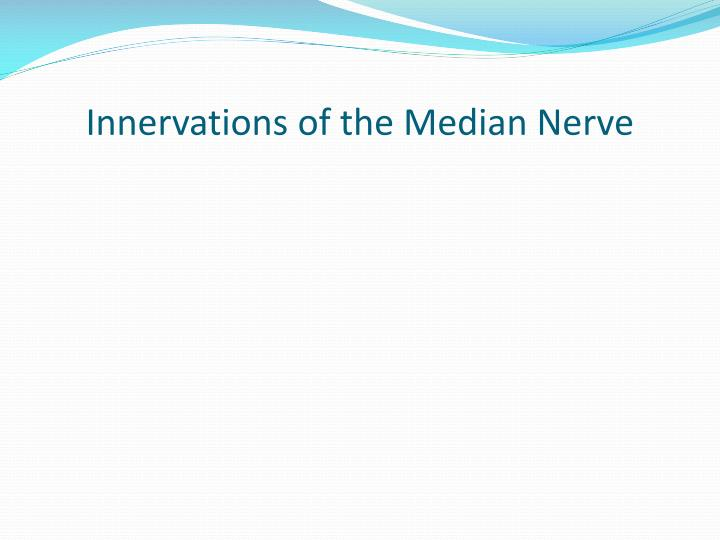Innervations of the median nerve