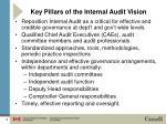 key pillars of the internal audit vision