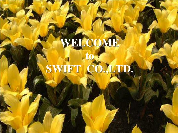 welcome to swift co ltd n.