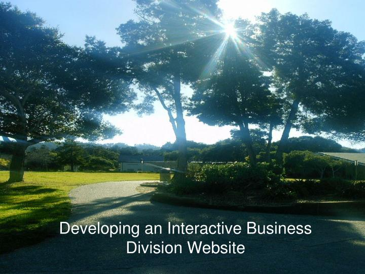 developing an interactive business division website n.