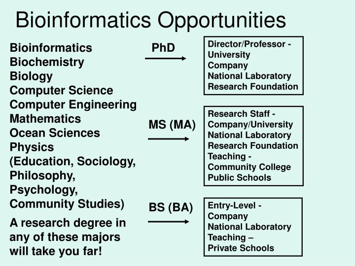 Bioinformatics Opportunities