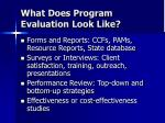 what does program evaluation look like1