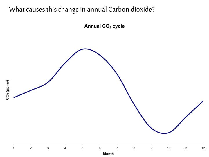 What causes this change in annual Carbon dioxide?