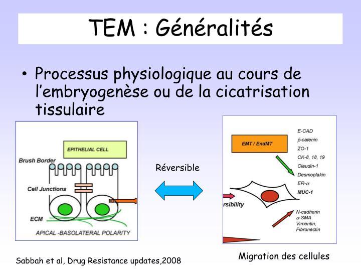 TEM : Généralités