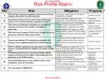 risk profile matrix