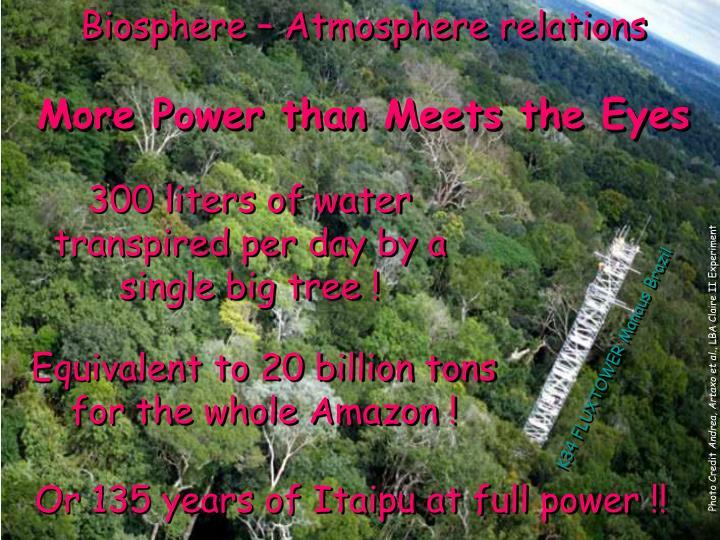 Biosphere – Atmosphere relations