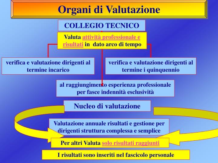 Organi di Valutazione