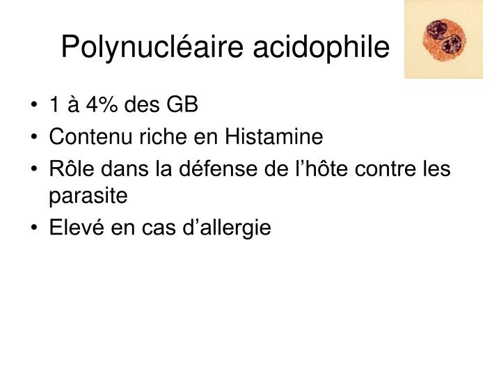 Polynucléaire acidophile