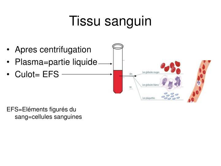 Tissu sanguin1