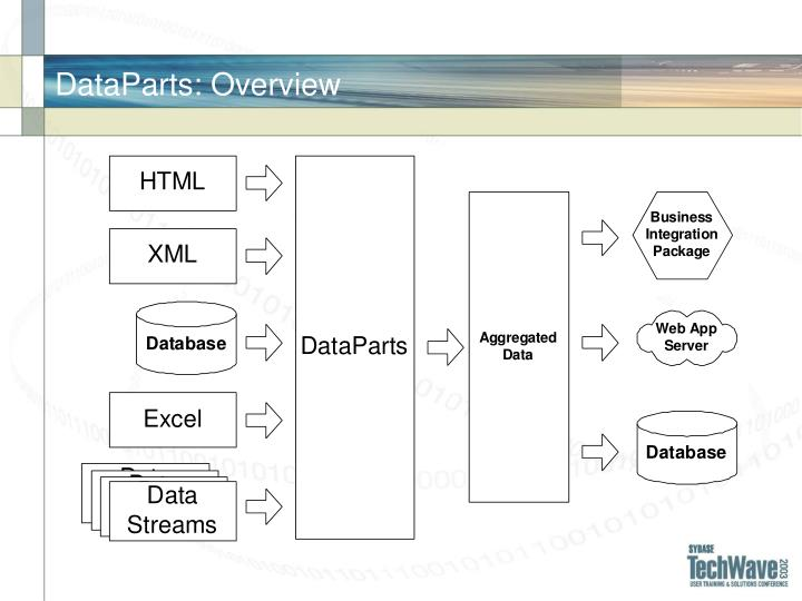 DataParts: Overview