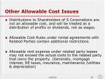 other allowable cost issues1
