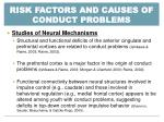 risk factors and causes of conduct problems2