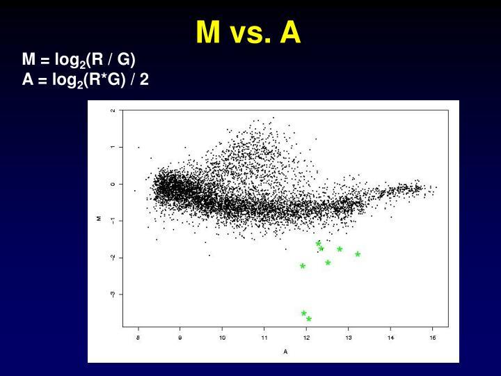 M vs. A