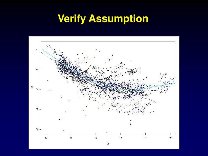 Verify Assumption