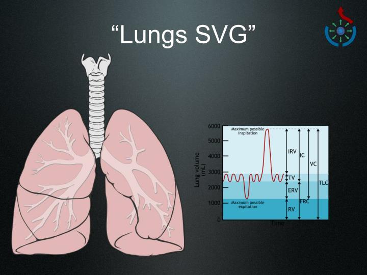 """Lungs SVG"""