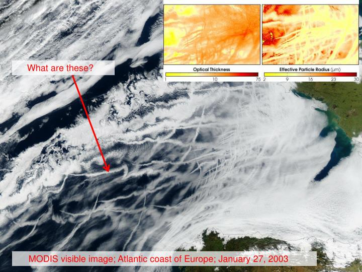 Indirect Effect in Nature (from MODIS)