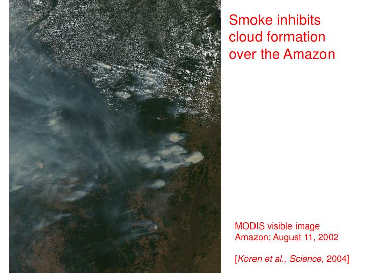 Smoke inhibits cloud formation over the Amazon