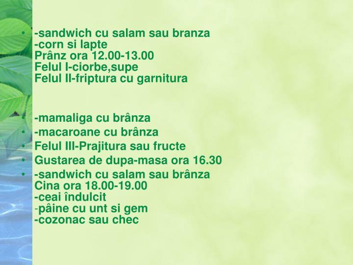 -sandwich cu salam sau branza