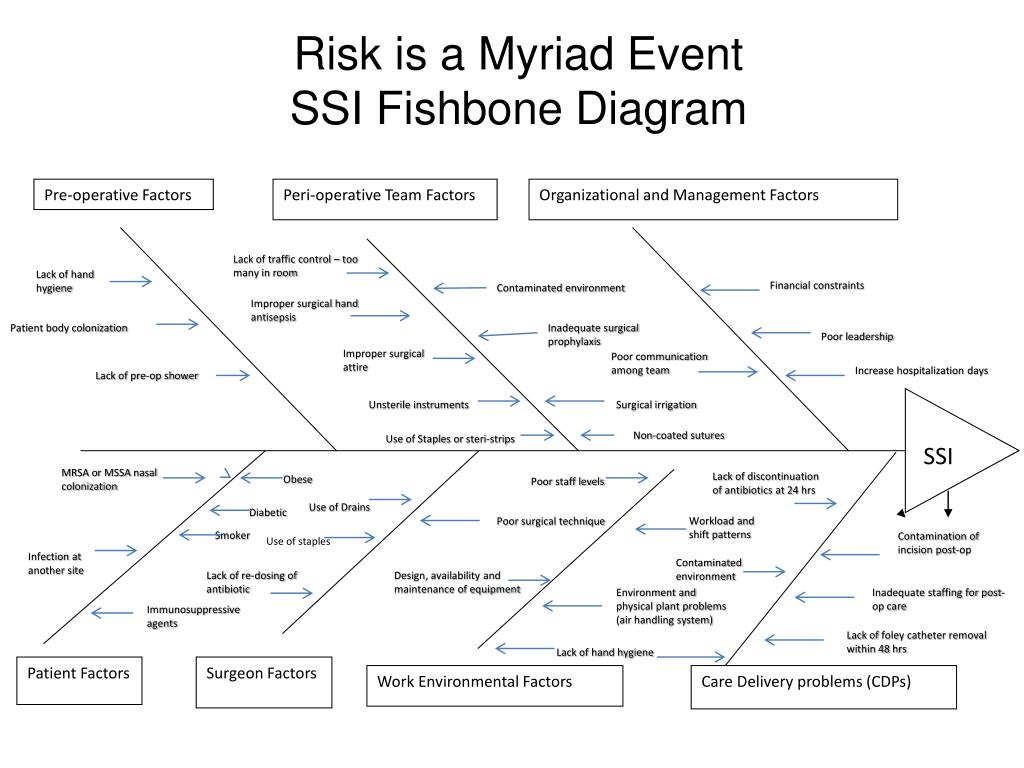 Ppt Risk Is A Myriad Event Ssi Fishbone Diagram Powerpoint Presentation Id 3976029