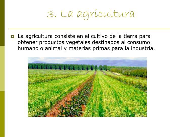 3. La agricultura