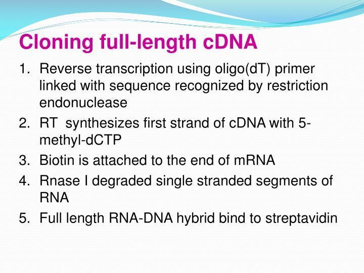 Cloning full-length