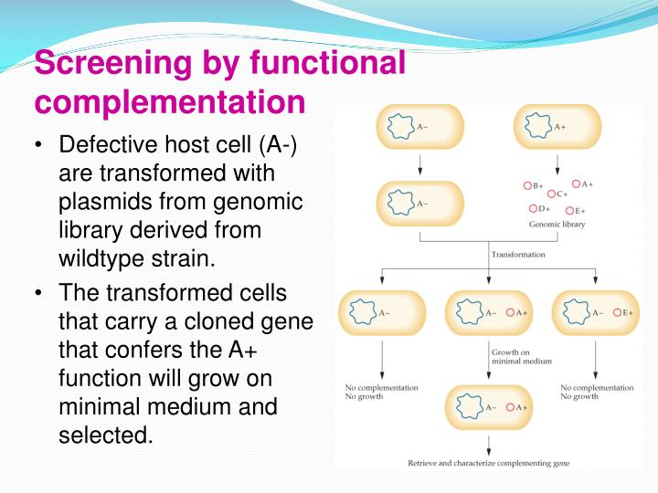 Screening by functional complementation