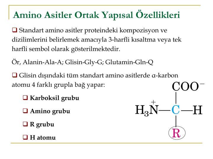 Amino Asitler Ortak Yapısal Özellikleri