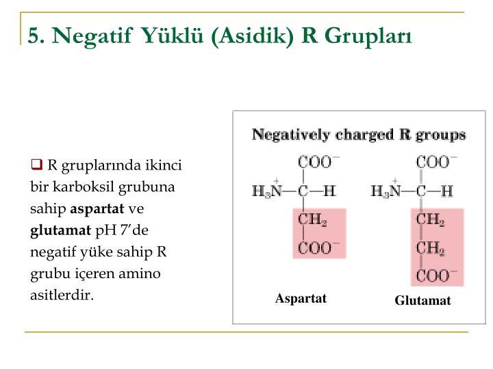 5. Negatif Yüklü (Asidik) R Grupları
